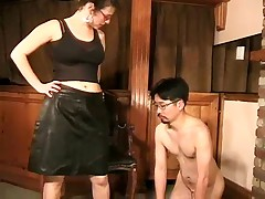 Pussy porn tube